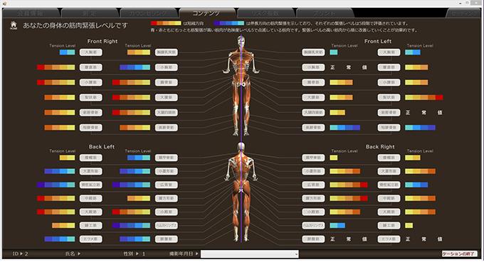 筋肉評価 筋肉バランスイメージ